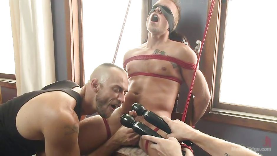 pawgs pounded Gay toys